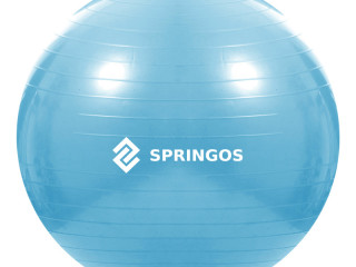 Exercise ball with a pump
